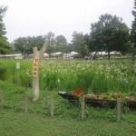 Festival Iris au parc Mizumoto