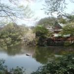 parc Inokashira