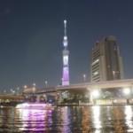 Sumida Parc